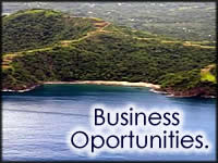 Business Oportunities